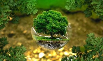 So kannst Du unsere Umwelt schützen